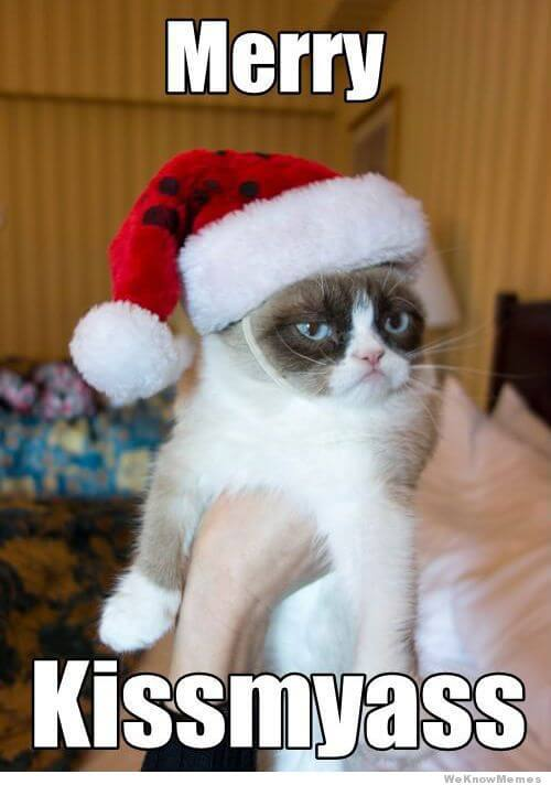 02_Cat_Christmas_Grumpy