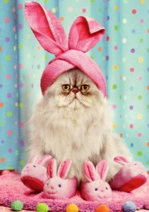 easter bunny catturban