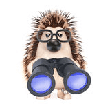 hedgehog-looks-binoculars