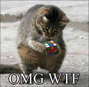 cat and rubiks cube