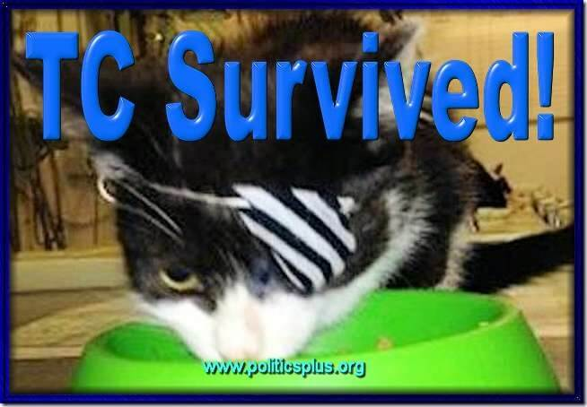 0828TCSurvived2